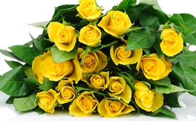 A bouquet yellow rose flowers HD wallpaper