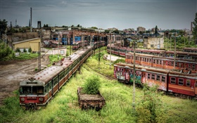 Abandoned subway station, trains, overgrown weeds HD wallpaper