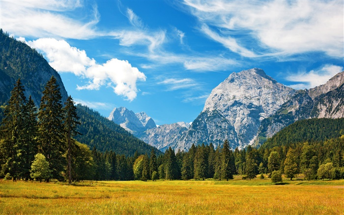 Alps, autumn, blue sky, clouds, forest, grass Wallpapers Pictures Photos Images