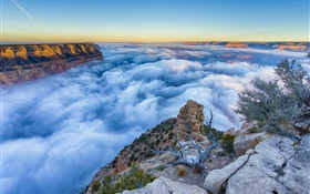 Arizona, USA, Grand Canyon, morning, sunrise, fog, clouds HD wallpaper
