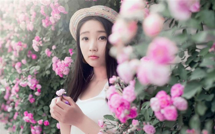 Asian girl with rose flowers Wallpapers Pictures Photos Images