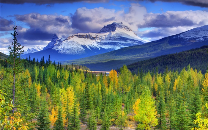 Banff National Park, Alberta, Canada, mountains, sky, forest, trees Wallpapers Pictures Photos Images