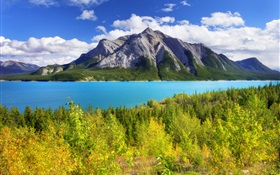 Banff Park, Alberta, Canada, Abraham Lake, mountain, trees HD wallpaper