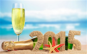 Champagne, starfish, sand, Year 2015 HD wallpaper