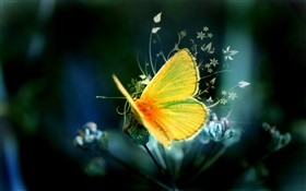 Creative design, yellow butterfly HD wallpaper
