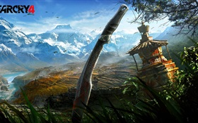Far Cry 4 HD wallpaper