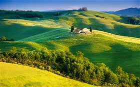 Italy, green fields, beautiful landscape HD wallpaper