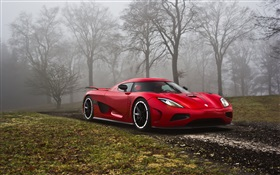 Koenigsegg red supercar in the forest HD wallpaper