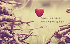 Love heart and twigs HD wallpaper