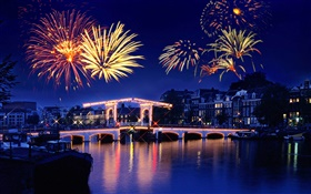 Night, city, house, lights, bridge, river, fireworks HD wallpaper