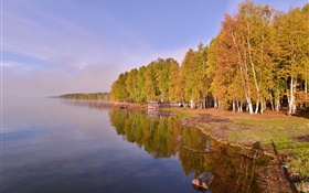 Russia, Lake Baikal, trees HD wallpaper