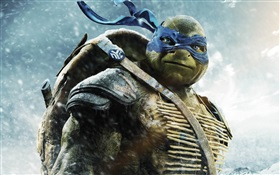Teenage Mutant Ninja Turtles, Leo HD wallpaper