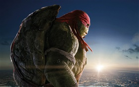 Teenage Mutant Ninja Turtles, Raph