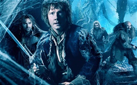 The Hobbit: The Desolation of Smaug HD wallpaper