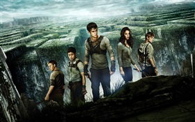 The Maze Runner, movie poster HD wallpaper