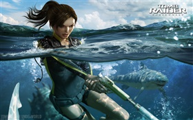 Tomb Raider: Underworld, Lara Croft HD wallpaper