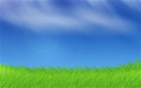 Windows pictures, grass, blue sky HD wallpaper