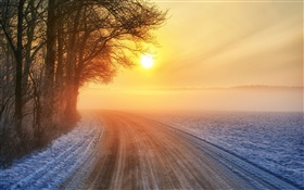 Winter sunrise, road, mist, trees HD wallpaper