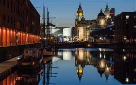 Albert Dock, night, houses, lights, Liverpool, England HD wallpaper