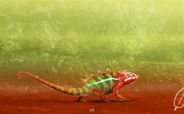 Artistic chameleon close-up Wallpapers Pictures Photos Images