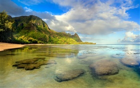Beach, coral reef, underwater, Kauai, Hawaiian HD wallpaper