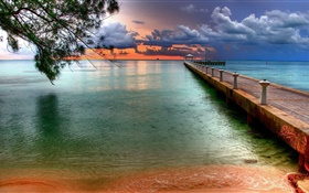 Beach, sea, pier, tree, clouds, sunset HD wallpaper