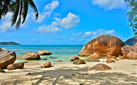 Beach, sea, stones, sun rays, Seychelles Island HD wallpaper
