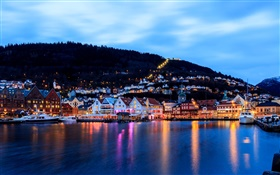Bergen, Norway, city, night, houses, sea, boat, lights HD wallpaper