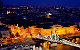 Budapest, Hungary, Danube river, bridge, buildings, night, lights HD wallpaper