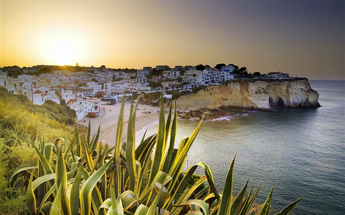 Carvoeiro, houses, coast, dusk, Lagoa, Faro, Portugal Wallpapers Pictures Photos Images