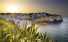 Carvoeiro, houses, coast, dusk, Lagoa, Faro, Portugal HD wallpaper