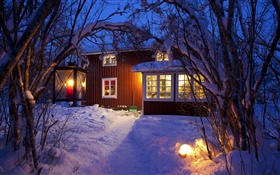 Country cottage, snow-covered trees, Sweden, night, lights HD wallpaper