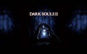 Dark Soul 2, night forest HD wallpaper