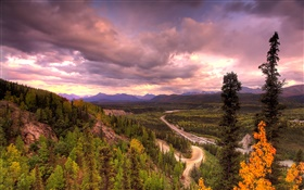 Denali National Park, Alaska, USA, road, trees, clouds HD wallpaper