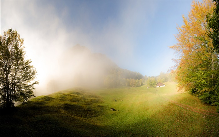 Grass, fog, morning, house, Glarus, Switzerland Wallpapers Pictures Photos Images