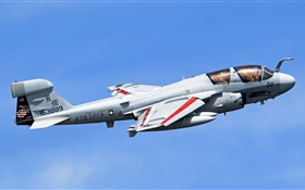 Grumman EA-6B Prowler aircraft HD wallpaper