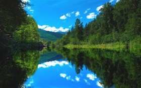 Lake, forest, trees, blue sky, water reflection HD wallpaper