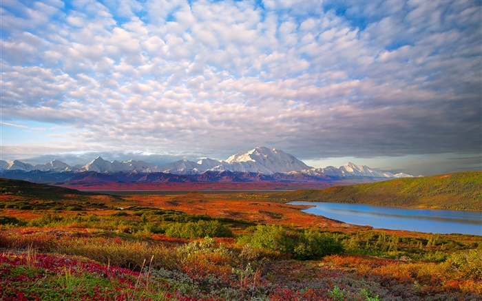 Lake, trees, clouds, dusk, Denali National Park, Alaska, USA Wallpapers Pictures Photos Images