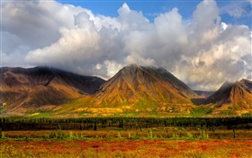 Mountains, trees, clouds, Denali National Park, Alaska, USA