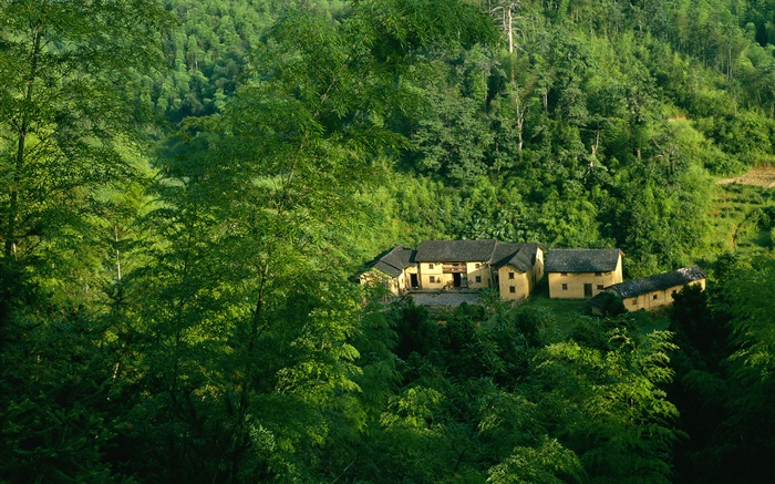 Mountains, trees, green, old house, Chinese landscape Wallpapers Pictures Photos Images