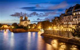 Notre Dame, France, river, trees, house, night, lights HD wallpaper