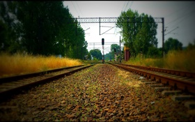 Railroad, trees, power lines, red light HD wallpaper