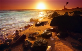 Rocky shoreline, sunset, Hawaii, USA HD wallpaper