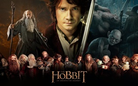 The Hobbit: An Unexpected Journey, movie widescreen HD wallpaper