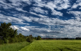 Trees, field, house, clouds HD wallpaper