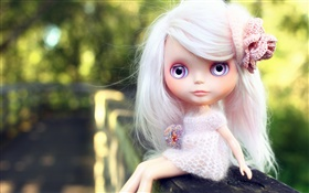 White hair, toy girl, doll HD wallpaper