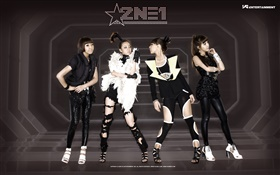 2NE1, Korean music girls 07 HD wallpaper