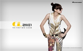 2NE1, Korean music girls 09 HD wallpaper