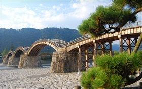 Arched wooden bridge, trees HD wallpaper