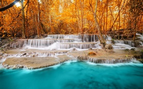 Autumn, forest, trees, river, waterfalls HD wallpaper